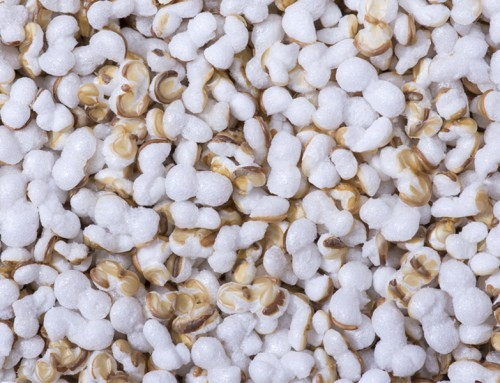 Puffed Amaranth Seeds
